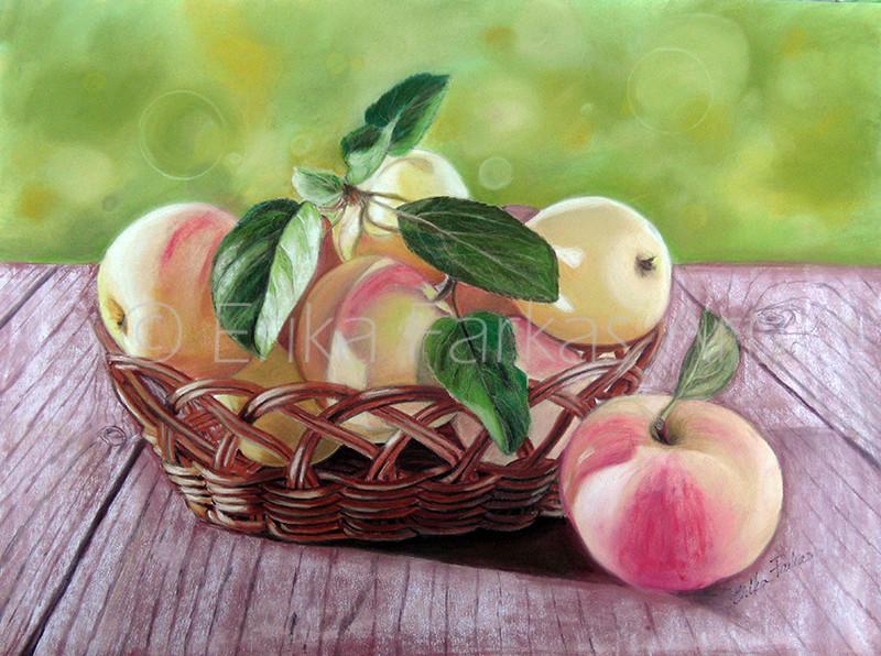 apples_800