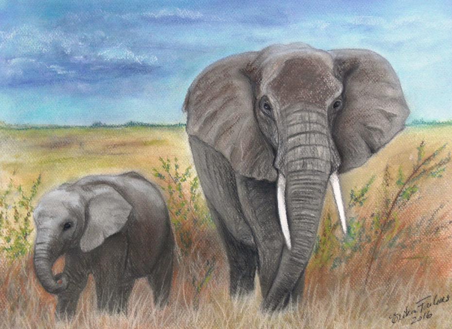 elephants1200