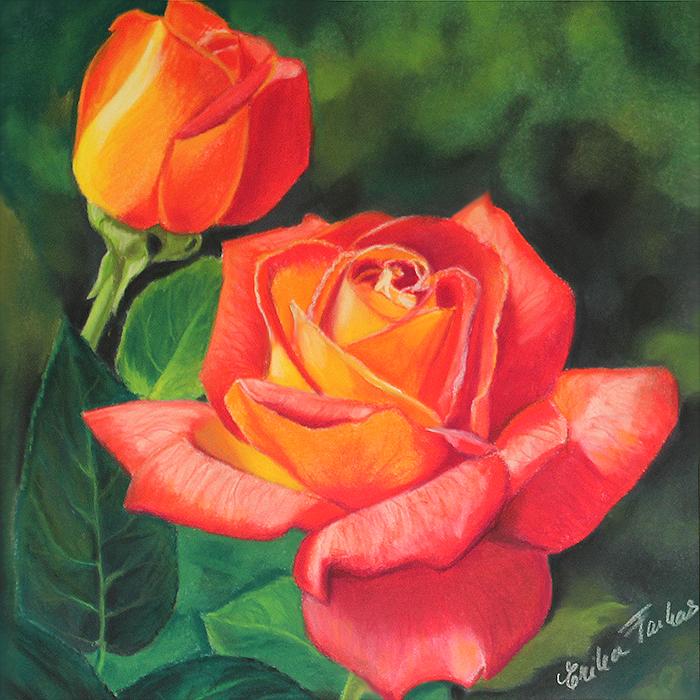 flaming_roses_700